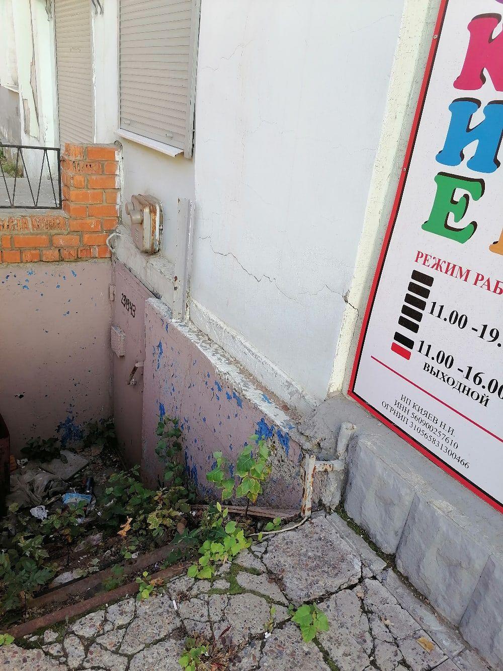 За несколько месяцев подходы к помещением, в которых раньше работали, зарастают бурьяном и мусором.
