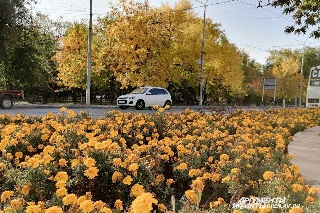 В Оренбург пришла осень.