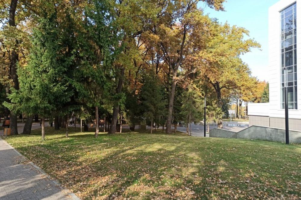 Сквер «Дубки», за деревьями - новый фонтан