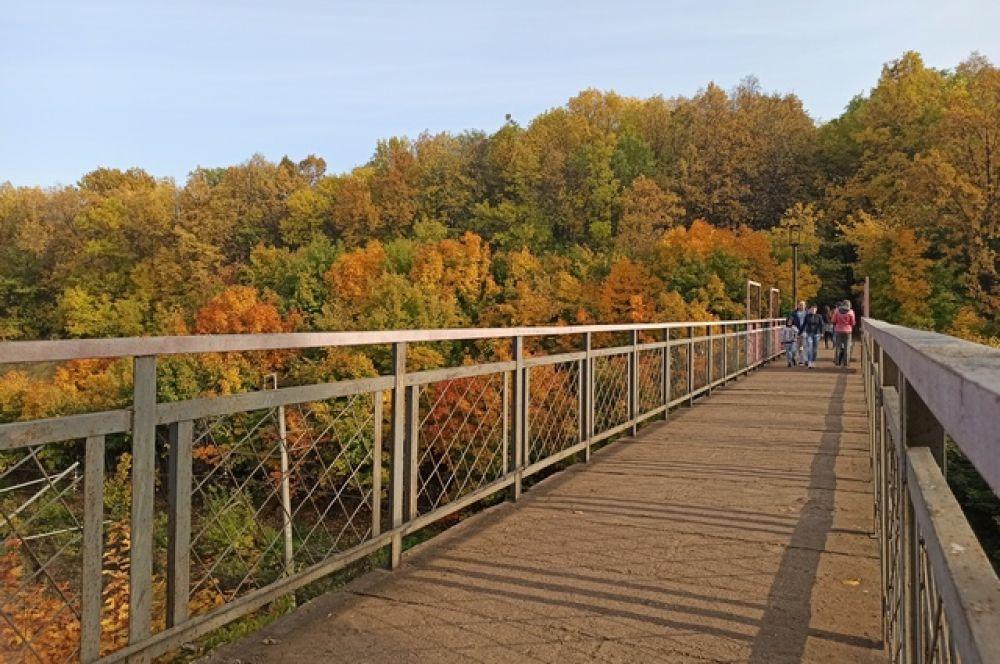 Пешеходный мостик над железной дорогой (улица Чудинова)
