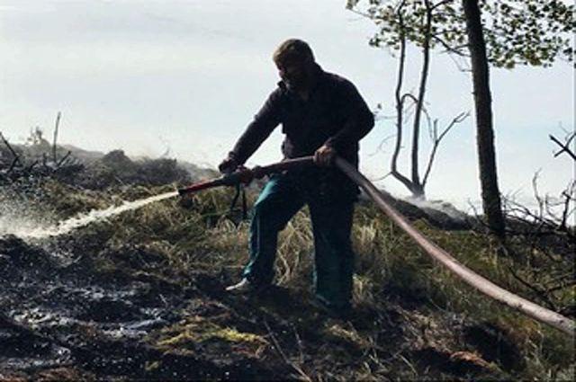 В выходные на Куршской косе произошел пожар