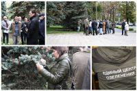 Эксперты проверили ели на Городской площади Тюмени