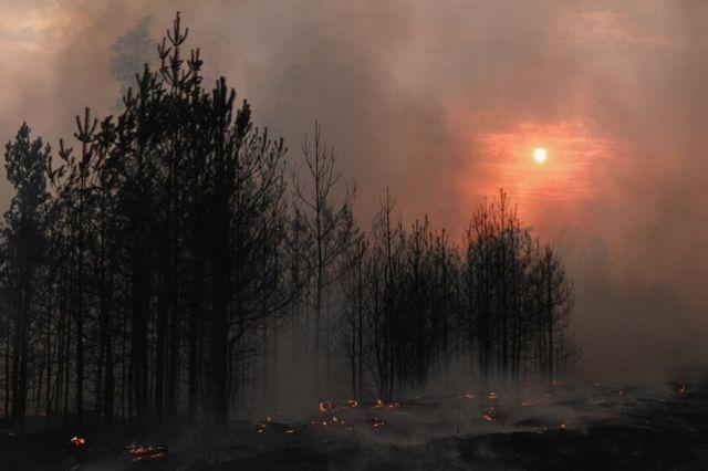 На выходных регион окутал смог от пожаров.
