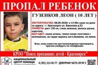 Леон Гузенков уже уходил из дома.