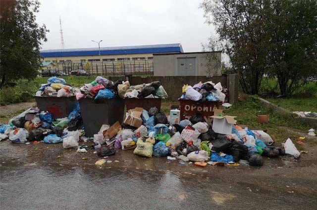 В Сыктывкаре стала повторяться одна и та же ситуация: мусорные баки переполнены, а вокруг разрастается новая свалка.
