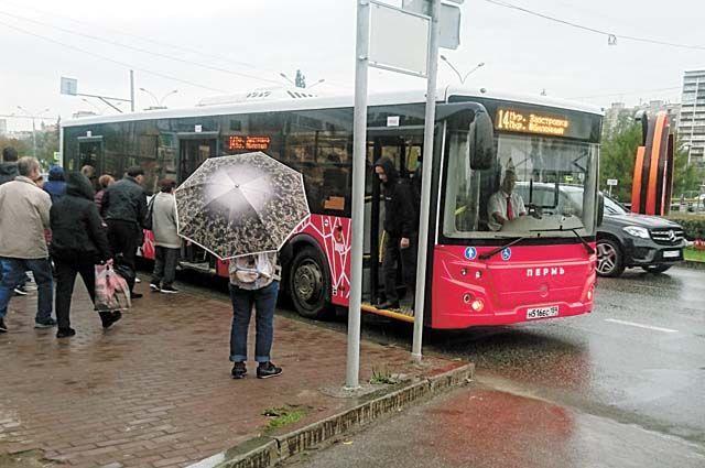 Пермяки жалуются, что порой автобус приходится ждать в два раза дольше, чем раньше.