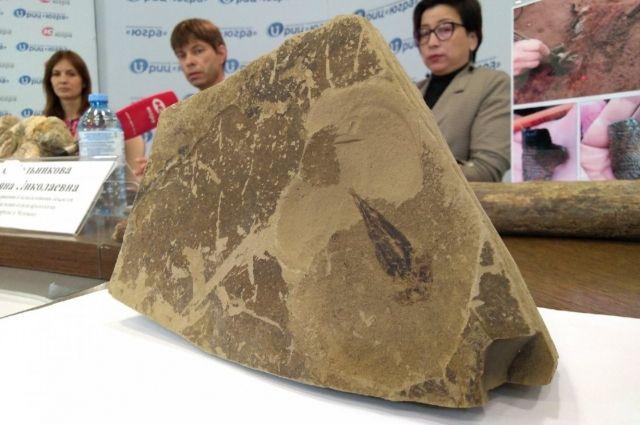 Отпечаток лопастеперой рыбы возрастом 350 млн лет