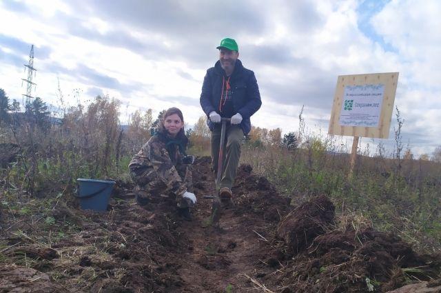 Будущее сибирского леса. В Красноярском крае высадят 20 тыс. деревьев