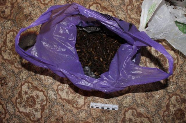 У жителя Голышмановского городского округа изъяли крупную партию марихуаны