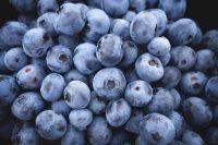В Уватском районе теперь будут выращивать ягоды плантациями