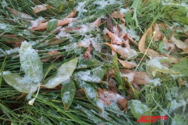 Синоптики прогнозируют дождь, снег и заморозки.