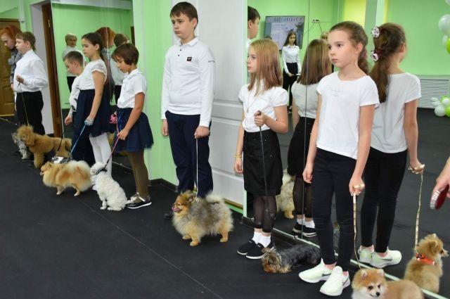 Дети Губкинского будут обучаться хендлингу
