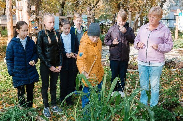 В пермской школе проводят уроки на открытом воздухе.