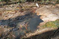 Проблема сбросов в реки и водоёмы Калужской области звучит не в первый раз. Не исключение в экологическом вопросе и областной центр.