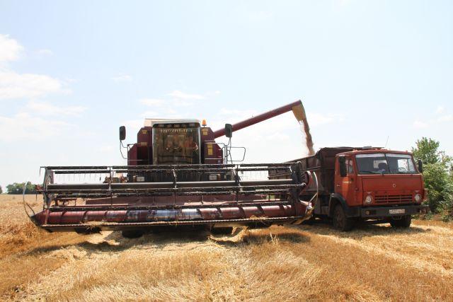 Чистка – один из важнейших процессов, ведь в результате именно от качества обработки будет зависеть сохранение зерна и его потребительские свойства.