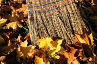 В Тюмени десятого октября проведут субботник