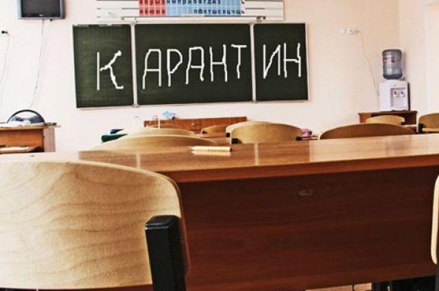 19 классов в школах Псковской области переведены на «дистанционку»