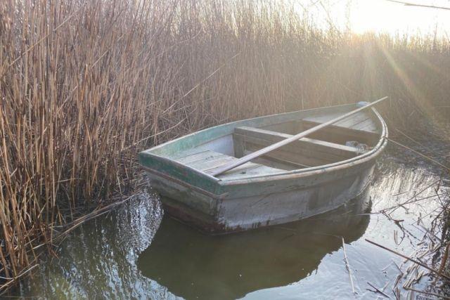 Планктон изъяли и выпустили в озеро Горькое в Чистоозерном районе региона, откуда он и были незаконно выловлен.
