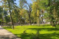 В планах по нацпроекту «Жилье и городская среда» — благоустроить 120 дворов и 55 общественных пространств в следующем году. В 2020 году — 122 придомовые территории и 55 мест отдыха.