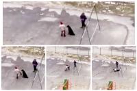 Жителей Ноябрьска возмутило поведение ребенка, пинавшего собаку