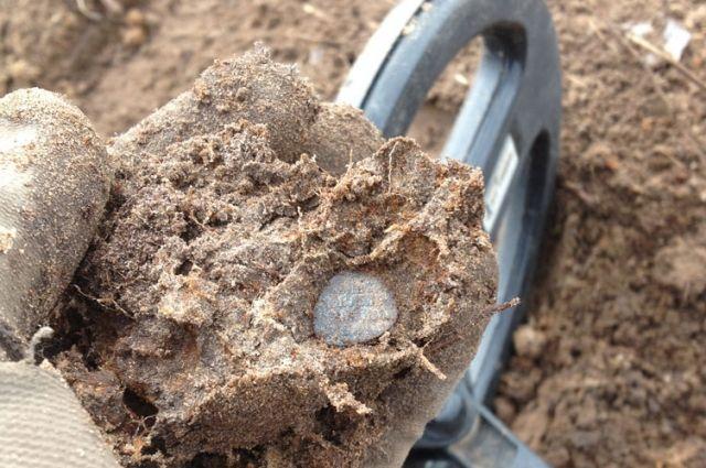 Около 250 монет-чешуек эпохи Ивана Грозного, Шуйского и Лжедмитрия обнаружены в Новоладожском районе ЛО.