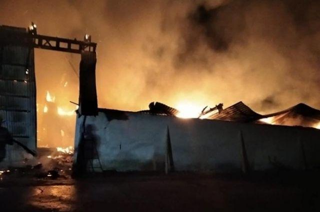 В Ивано-Франковской области сгорел склад с большими запасами зерна