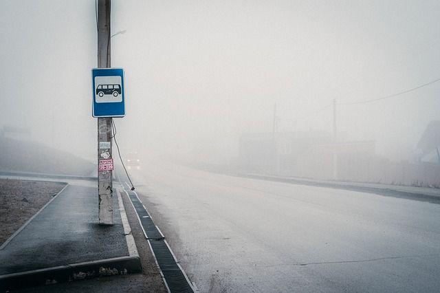 В Сарапуле с 1 ноября вырастет цена проезда в общественном транспорте