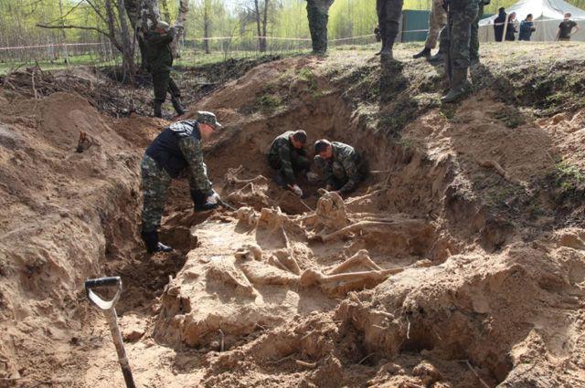 Место массового захоронения мирных граждан в районе деревни Жестяная Горка Батецкого района Новгородской области.
