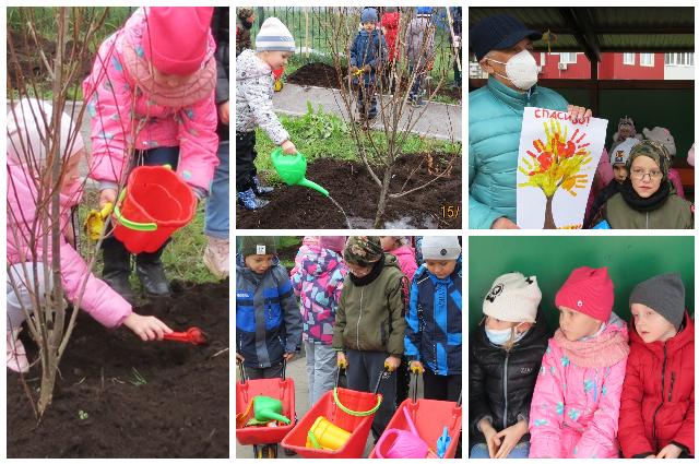 В тюменском детском саду появилась аллея в память о Владиславе Крапивине