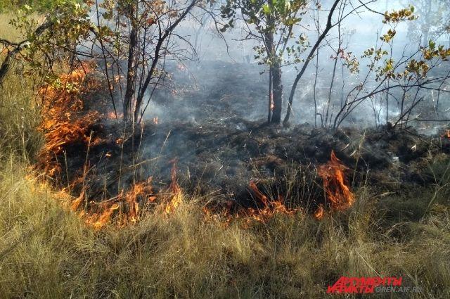С возгораниями в Новотроицке пожарным помогают бороться волонтеры.