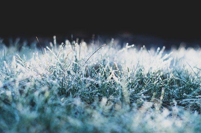 Рекорд для первого снега был в 2015 году, тогда выпало 25 сантиметров осадков.