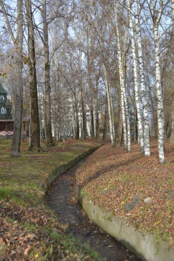 Осень в Коми, как и по всей России, побила температурные рекорды.