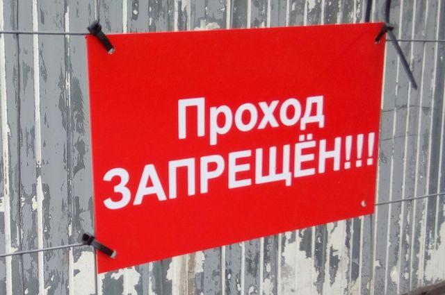 Карантин в селе Вязовое ввели из-за выявленных случаев заболевания животных бешенством.