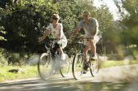 Регулярные физические нагрузки снижают риск развития болезней системы кровообращения.