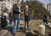 Предприниматели Сургута, представляющие свои идеи на конкурсы, посадили аллею