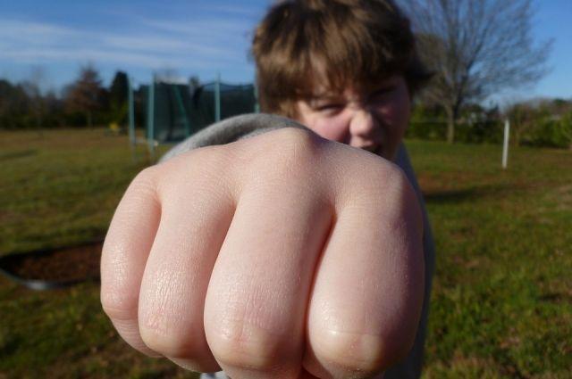 Часто мы боремся со следствием, а не с причиной подростковой агрессии.