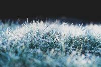 Жители Оренбуржья делятся фотографиями первого снега.