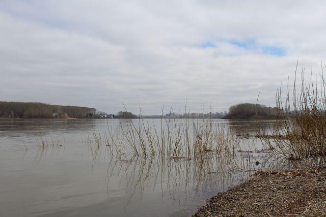 Специалисты Роспотребнадзора взяли пробы воды в реке.