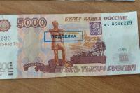 Какие меры нужно предпринимать оренбуржцам, если они обнаружили фальшивую купюру?