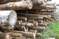 Предприниматель направлял лес за границу по подложным документам.