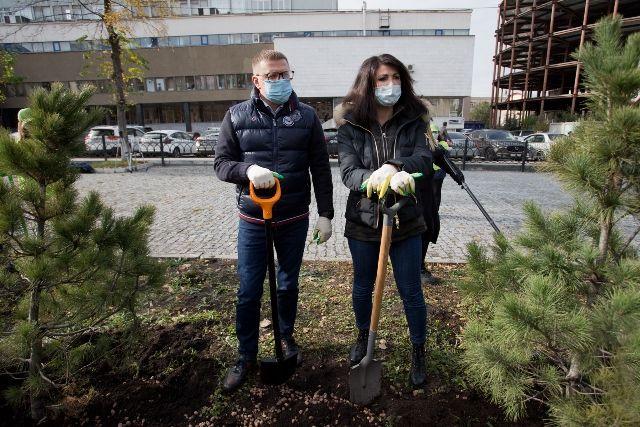 День для посадки кедров выдался солнечный и погожий. Алексей Текслер с и его жена Ирина работали вместе.
