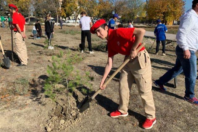 Юнармейцы посадили более 100 деревьев в Дербентском районе
