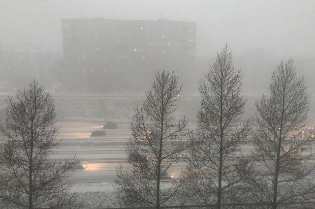 Сильный ветер и мокрый снег накроют Новосибирск.