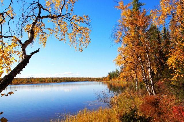 Прогноз погоды на 29 октября: в Украине будет солнечно