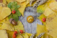 30 октября: православный праздник, церковно-народный календарь, гадания дня