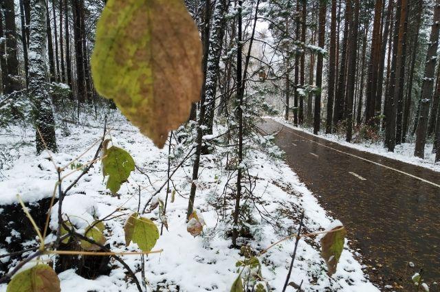 Загородные трассы могут быть скользкими из-за таяния и замерзания снега.