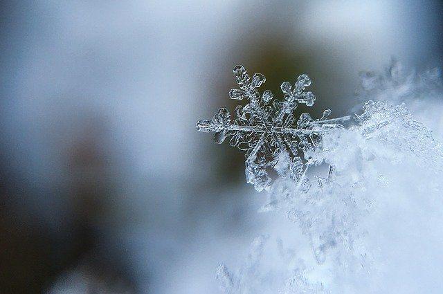 В Новосибирской области, как и целом по России, ожидается теплая зима. Такой прогноз озвучил научный руководитель Гидрометцентра России Роман Вильфанд в беседе с информагентством ТАСС.