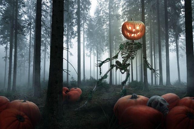 Несмотря на разгар второй волны коронавируса, новосибирцы празднуют Хэллоуин. В честь праздника на улицах города появилась всякая нечисть — приведения, скелеты, ведьмы и ходячие мертвецы.