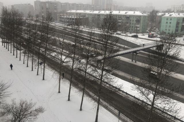 Теплая и пасмурная погода ждет новосибирцев в первый день ноября.