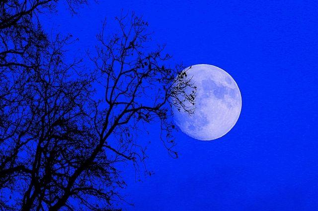 В предстояющую субботу 31 октября «Голубая Луна» засияет в полную силу в 21:48 по местному времени
